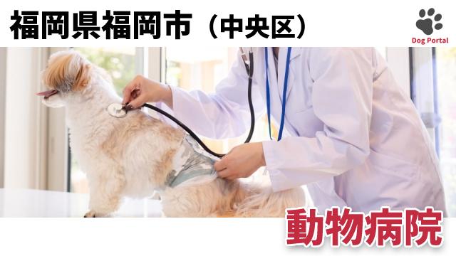 福岡市中央区の動物病院