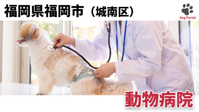 福岡市城南区の動物病院