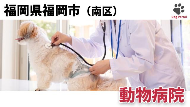 福岡市南区の動物病院