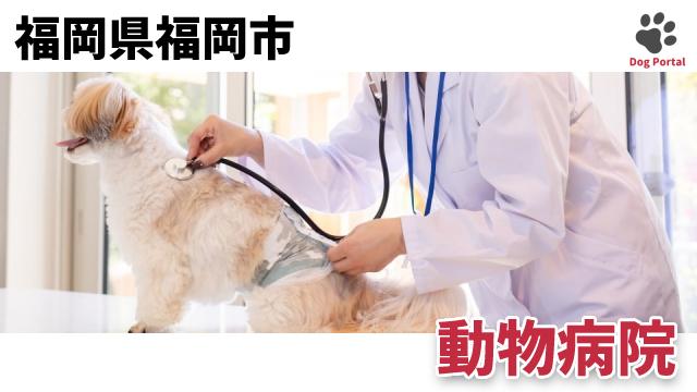 福岡市の動物病院