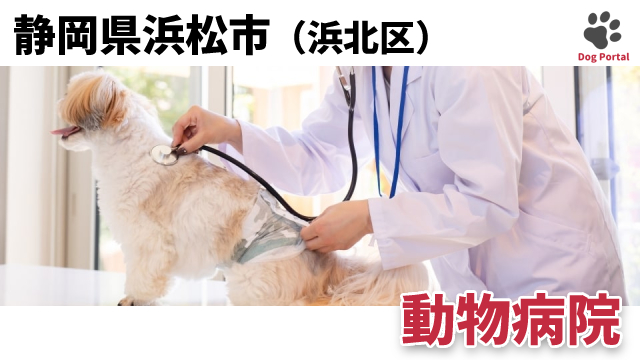 浜松市浜北区の動物病院