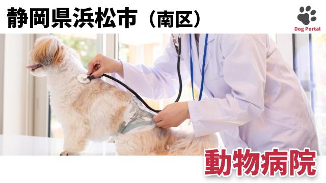 浜松市南区の動物病院