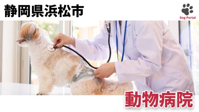 浜松市の動物病院
