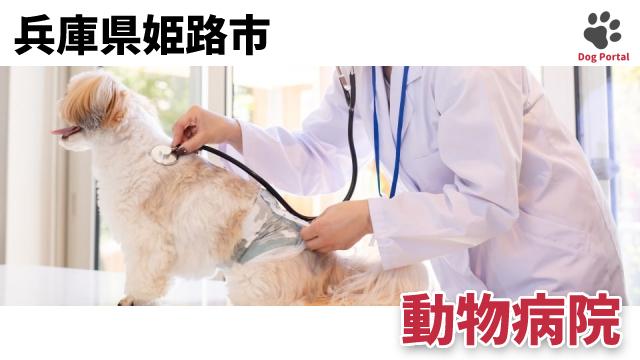 姫路市の動物病院