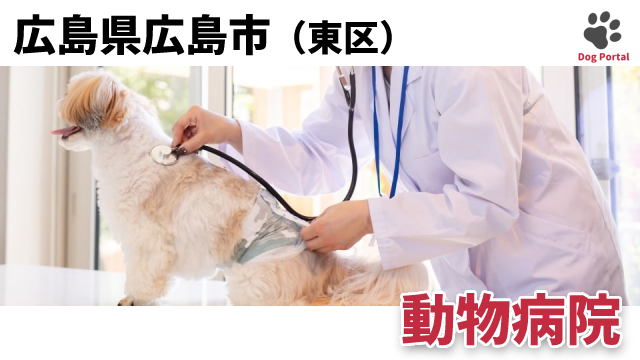 広島市東区の動物病院
