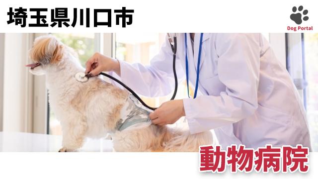 川口市の動物病院