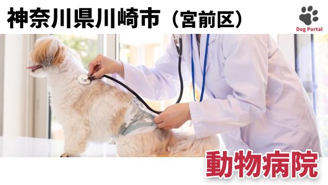 川崎市宮前区の動物病院