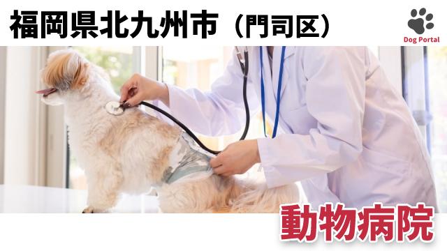 北九州市門司区の動物病院