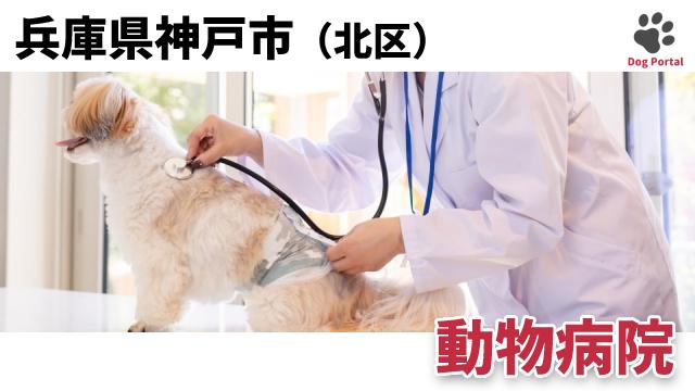 神戸市北区の動物病院