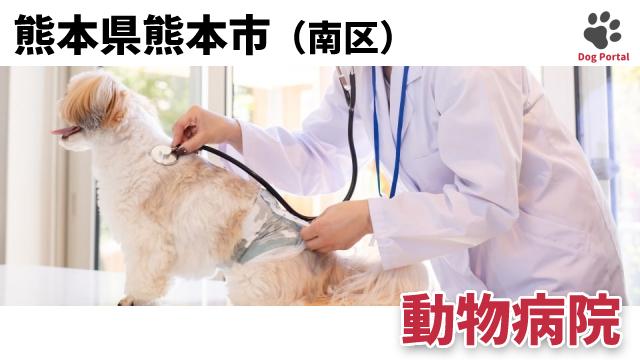 熊本市南区の動物病院