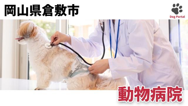 倉敷市の動物病院
