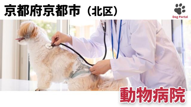 京都市北区の動物病院