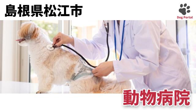 松江市の動物病院