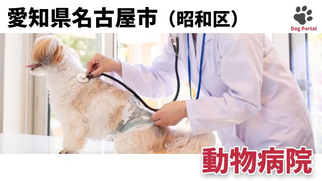 名古屋市昭和区の動物病院