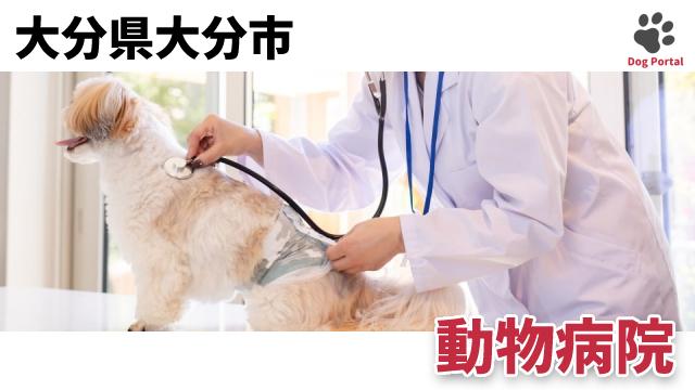 大分市の動物病院