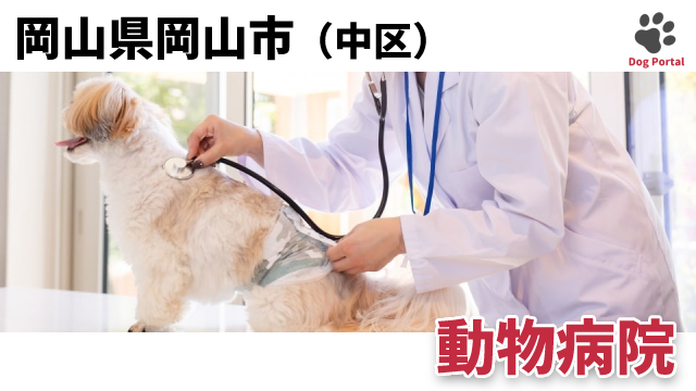岡山市中区の動物病院