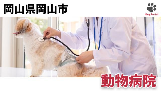 岡山市の動物病院