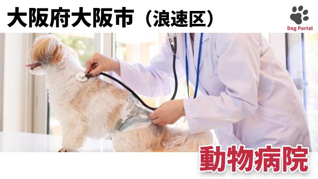大阪市浪速区の動物病院