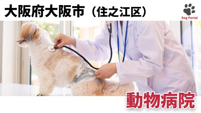 大阪市住之江区の動物病院