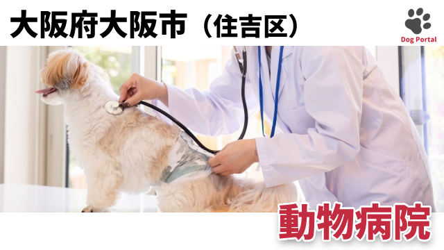 大阪市住吉区の動物病院