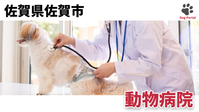 佐賀市の動物病院