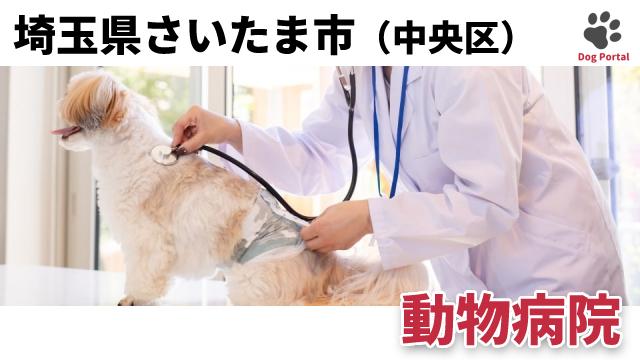 さいたま市中央区の動物病院