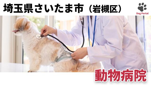 さいたま市岩槻区の動物病院