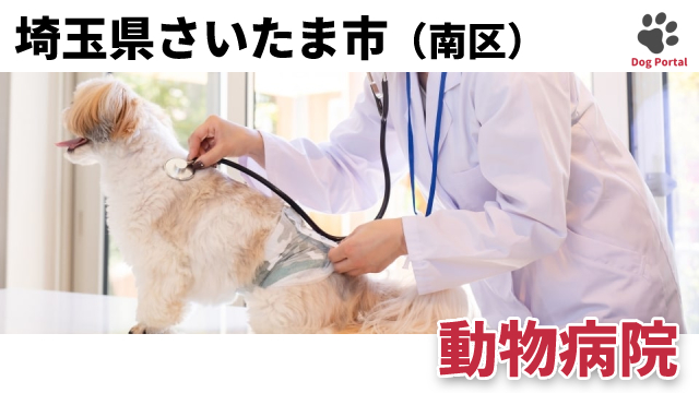 さいたま市南区の動物病院