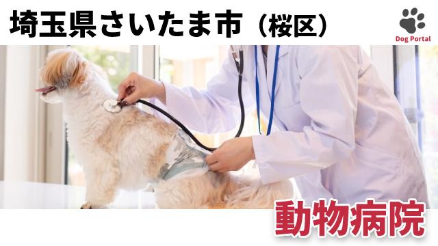 さいたま市桜区の動物病院