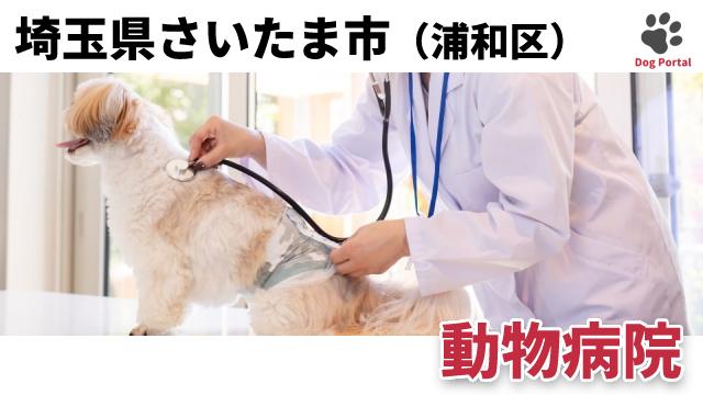 さいたま市浦和区の動物病院