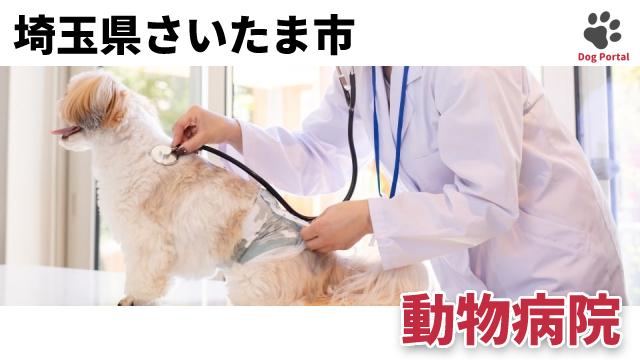 さいたま市の動物病院