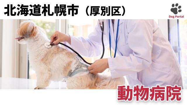 札幌市厚別区の動物病院