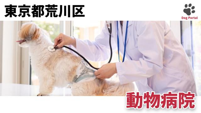 東京都荒川区の動物病院