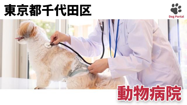 東京都千代田区の動物病院