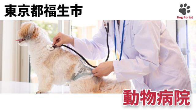 東京都福生市の動物病院