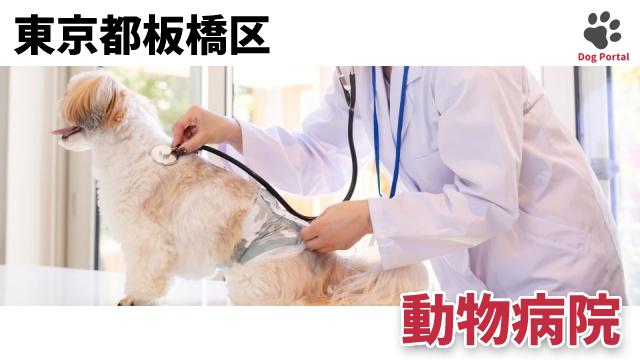 東京都板橋区の動物病院