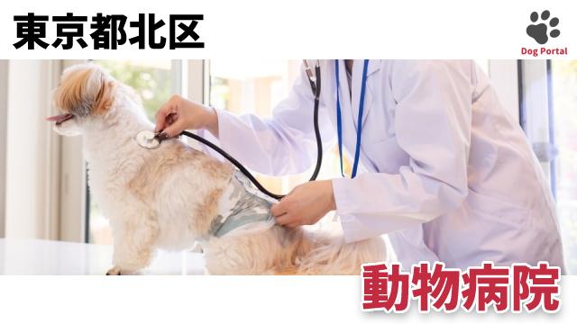 東京都北区の動物病院