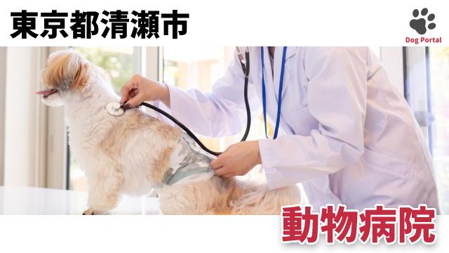 東京都清瀬市の動物病院