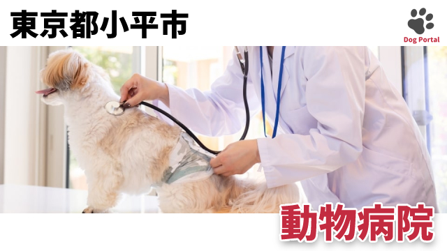 東京都小平市の動物病院