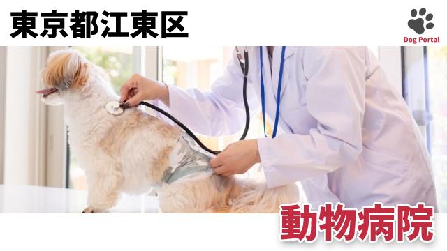 東京都江東区の動物病院
