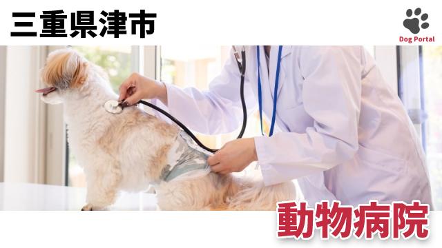 津市の動物病院