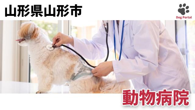 山形市の動物病院