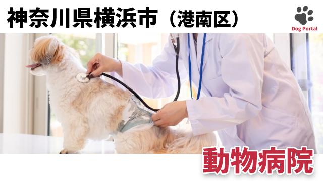 横浜市港南区の動物病院