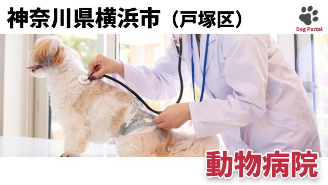 横浜市戸塚区の動物病院