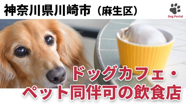 川崎市麻生区のドッグカフェ
