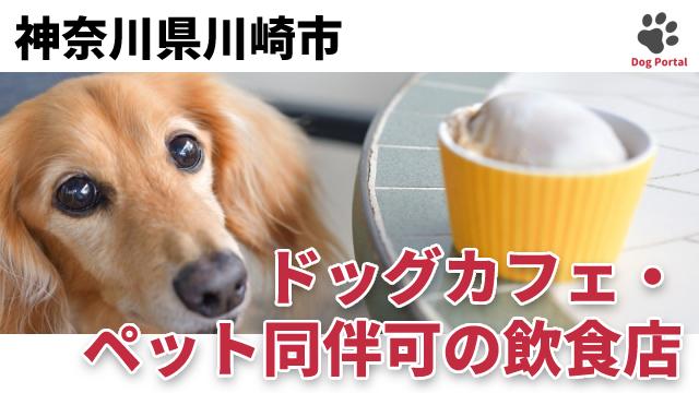 川崎市のドッグカフェ