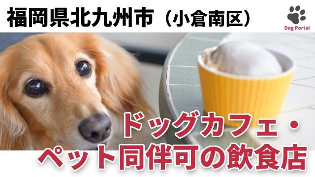 北九州市小倉南区のドッグカフェ