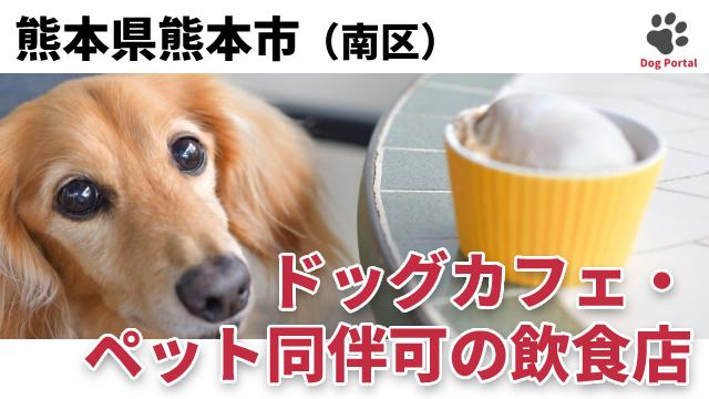 熊本市南区のドッグカフェ