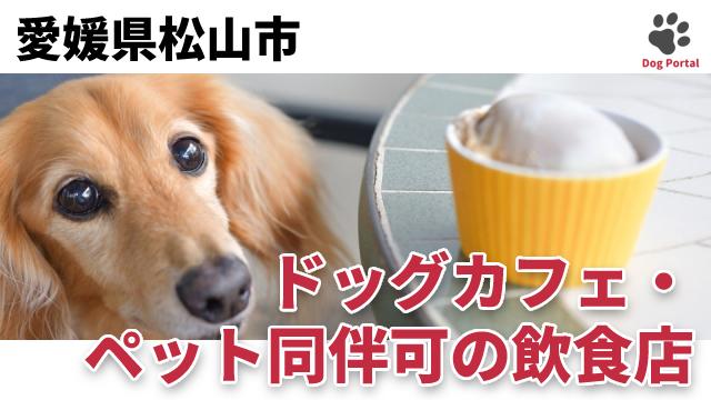 松山市のドッグカフェ