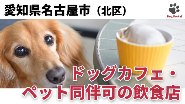 名古屋市北区のドッグカフェ